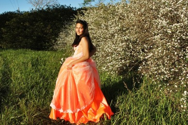 dress-237668_960_720